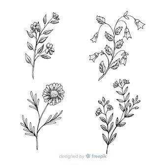 Sammlung der wilden blume auf schwarzweiss