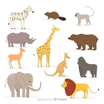 Sammlung des flachen tropischen tieres