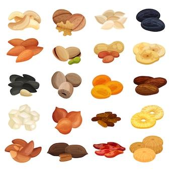Sammlung getrockneter früchte nüsse