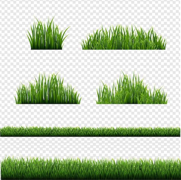 Sammlung grüner grasgrenzen