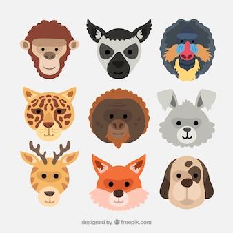 Sammlung mit verschiedenen tiergesichtern