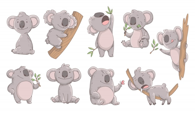 Sammlung niedlichen koala in verschiedenen posen.