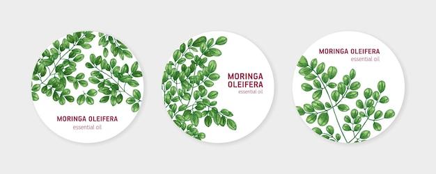 Sammlung runder etiketten mit miracle tree oder moringa oleifera. satz kreisförmiger tags mit heilpflanze, die in der kräuterkunde verwendet wird. natürliche vektorillustration im eleganten realistischen stil für ätherisches öl.