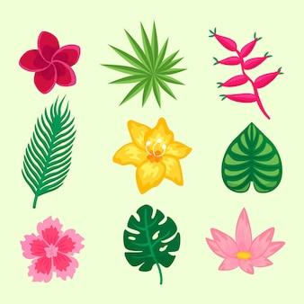 Sammlung tropischer blumen und blätter