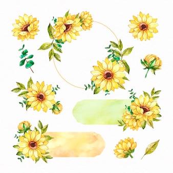 Sammlung von aquarell sonnenblumenrahmen und sammelalbum gesetzt