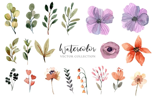 Sammlung von aquarellblumen lokalisiert auf weiß