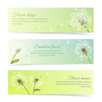 Sammlung von bannern und bänder mit sommer löwenzahn und pollen design-elemente isoliert vektor-illustration