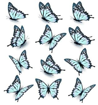 Sammlung von blauen schmetterlingen, die in verschiedene richtungen fliegen. vektor.
