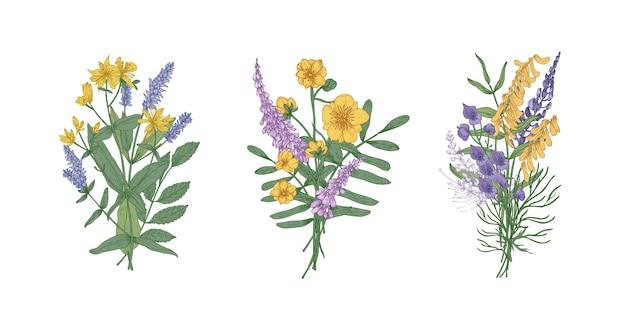 Sammlung von blumensträußen mit schönen wilden wiesenblumen und blühenden kräutern