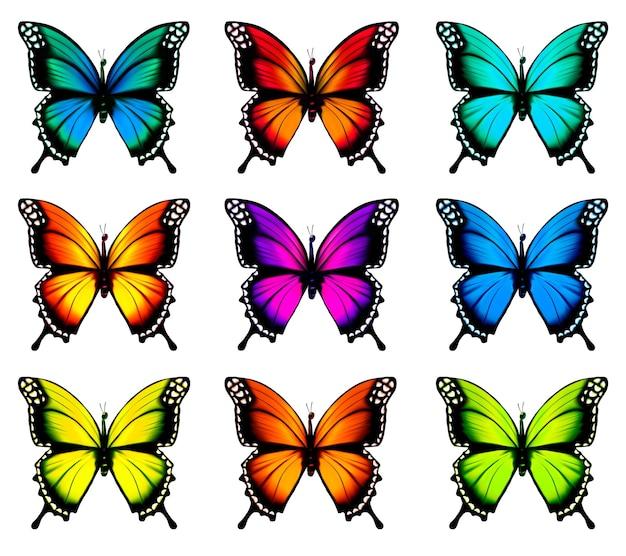Sammlung von bunten schmetterlingen, die in verschiedene richtungen fliegen. vektor.