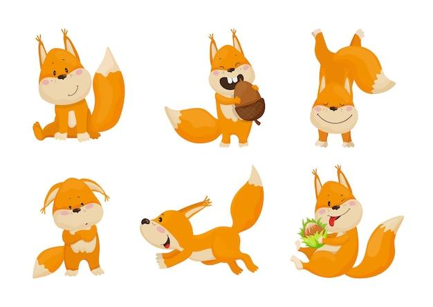 Sammlung von cartoon-illustrationen mit eichhörnchen