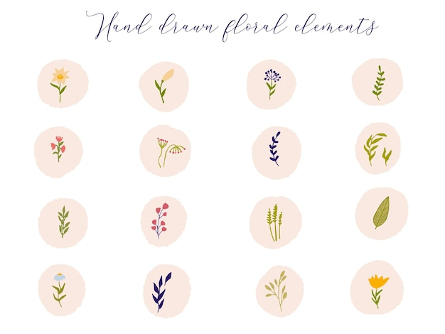Sammlung von floralen highlight-cover icon bunte wildblumen und zweige