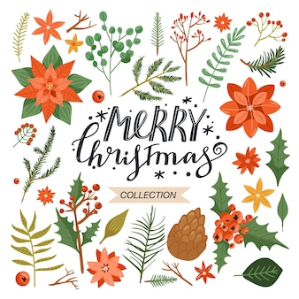 Sammlung von floralen weihnachtselementen.