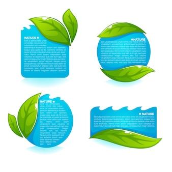 Sammlung von frischen grünen blättern und sauberen blauen wasseretiketten