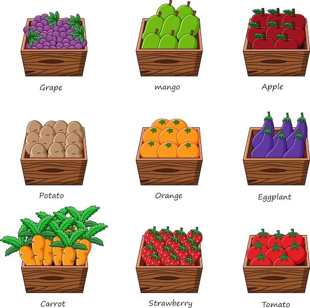 Sammlung von gemüse und früchten