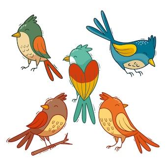Sammlung von gezeichneten vögeln