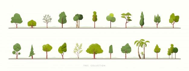 Sammlung von grünen baumvektorikonen