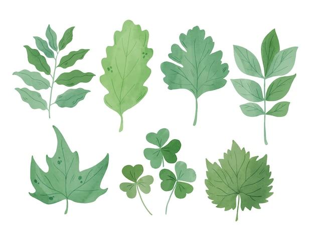 Sammlung von grünen blättern im aquarellstil