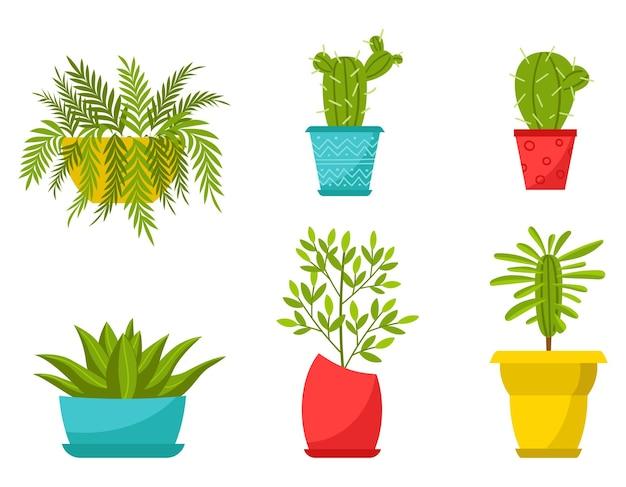 Sammlung von heimischen pflanzen in töpfen auf weiß isoliert
