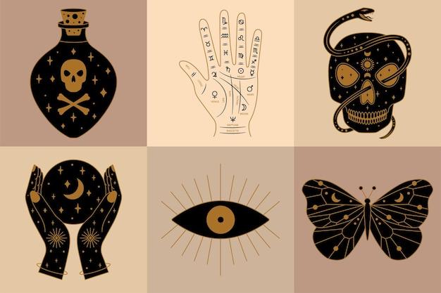 Sammlung von hexerei-illustrationen mit wahrsagerin palmenschmetterling und totenkopf in vektor