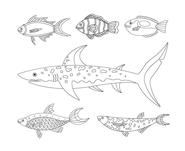 Sammlung von illustrationen von meer- und wasserfischen