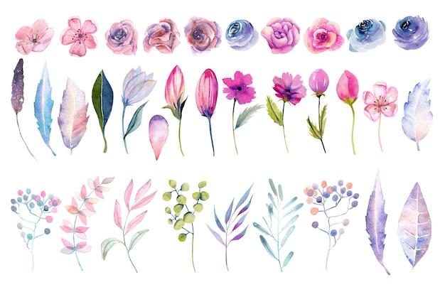 Sammlung von isolierten rosa aquarellrosen, frühlingsblumen, blättern und zweigen