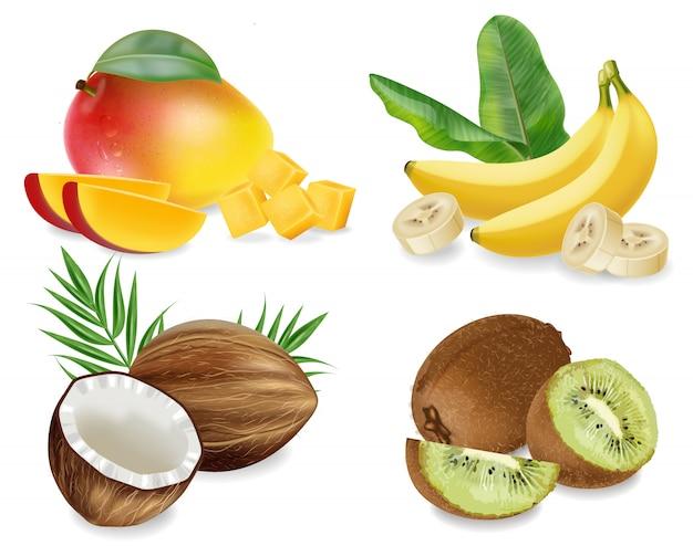 Sammlung von mangos, kokosnüssen, kiwis und bananen