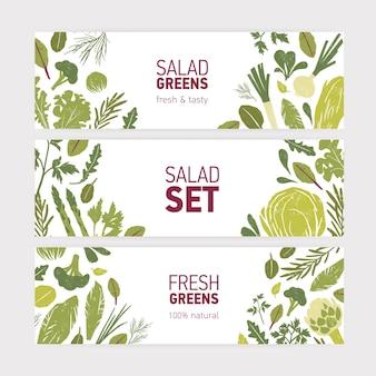Sammlung von modernen web-banner-vorlagen mit grünem gemüse, frischen salatblättern und gewürzkräutern auf weiß
