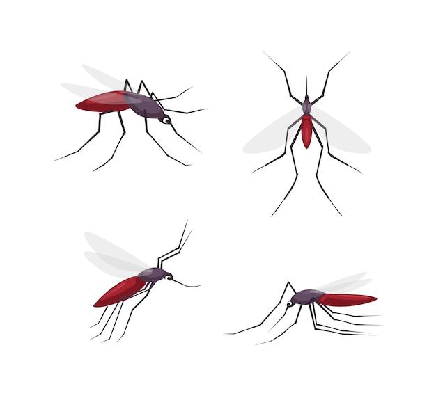 Sammlung von mücken detailliert
