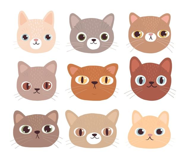 Sammlung von niedlichen gesichtern von katzen