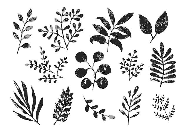 Sammlung von schwarzen und grauen monochromen strukturierten tintenblättern und zweigen, handgezeichneter satz kräuter