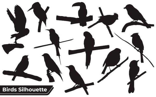 Sammlung von sitzenden und fliegenden vogelsilhouetten