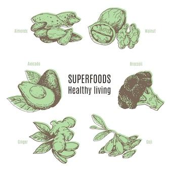 Sammlung von superfood-konzept