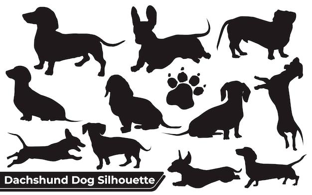 Sammlung von tier dackel hund in verschiedenen positionen