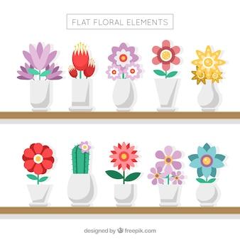 Sammlung von vasen mit schönen blumen