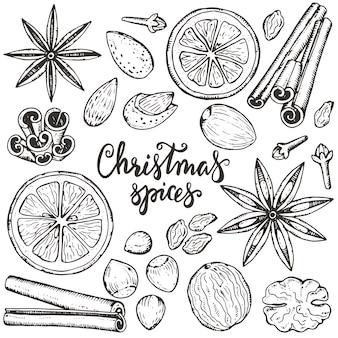 Sammlung von weihnachtsgewürzen und zitrusfrüchten