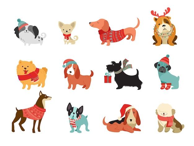 Sammlung von weihnachtshunden, frohe weihnachten illustrationen von niedlichen haustieren mit gestrickten accessoires