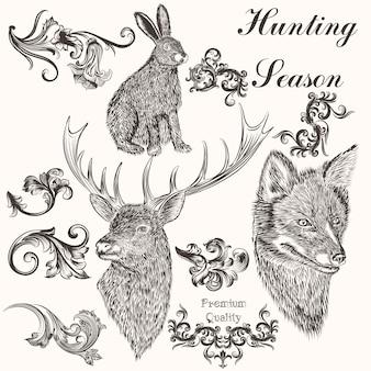 Sammlung von wilden tieren und von hand gezeichnet verzierungen