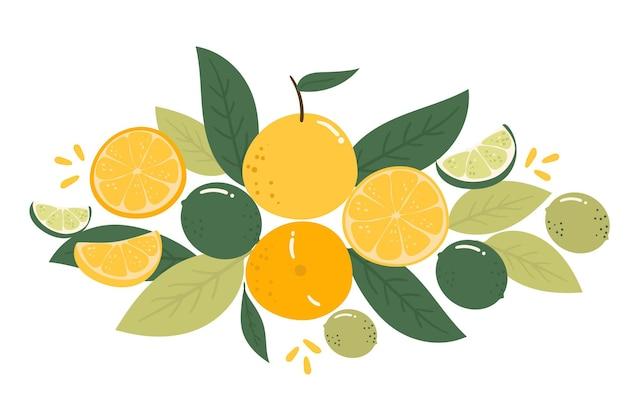 Sammlung zitrusfrüchte handgezeichnete illustration gesunde natur frisches konzept