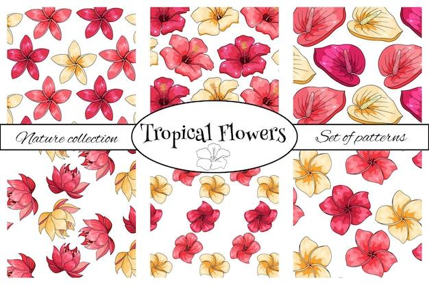 Sammlungen tropischer muster mit exotischen blumen im cartoon-stil. heller sommerdruck für design und hintergrund.