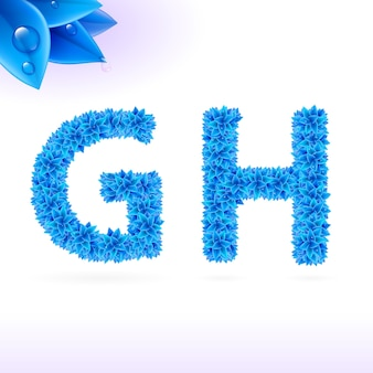Sans serif schriftart mit blauem blattdekoration auf weißem hintergrund g- und h-buchstaben