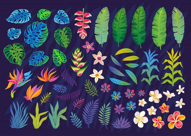 Satz abstrakte tropische pflanzen, blumen, blätter. design-elemente. bunter blumendschungel der tierwelt. regenwald kunst hintergrund. illustration