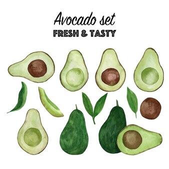 Satz aquarell avocado. handgezeichnete tropische illustration.