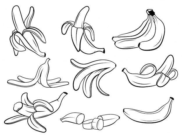 Satz bananen. sammlung von frischen vitaminfrüchten. saftige früchte. zeichnen für kinder.