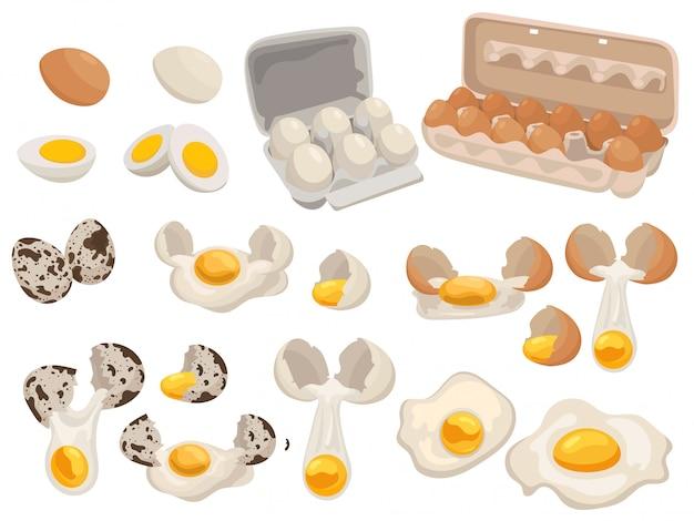 Satz bauernhofeier für lebensmittel. sammlung von hühner- und wachteleiern in der packung.