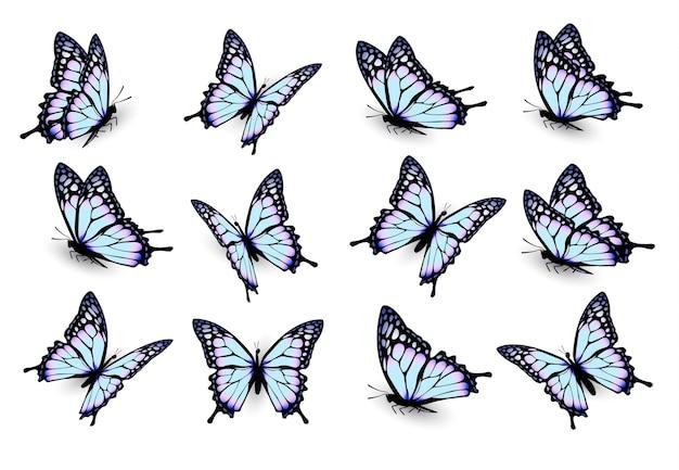 Satz blaue schmetterlinge, die in verschiedene richtungen fliegen. vektor.