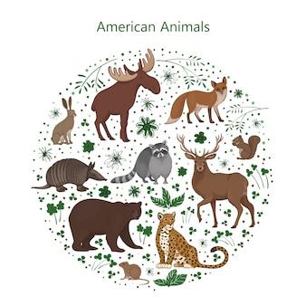 Satz cartoon niedliche amerikanische tiere mit blättern blumen und flecken in einem kreis. waschbär, fuchs, jaguar, eichhörnchen, elchbär gürteltier hase hirsch wühlmaus