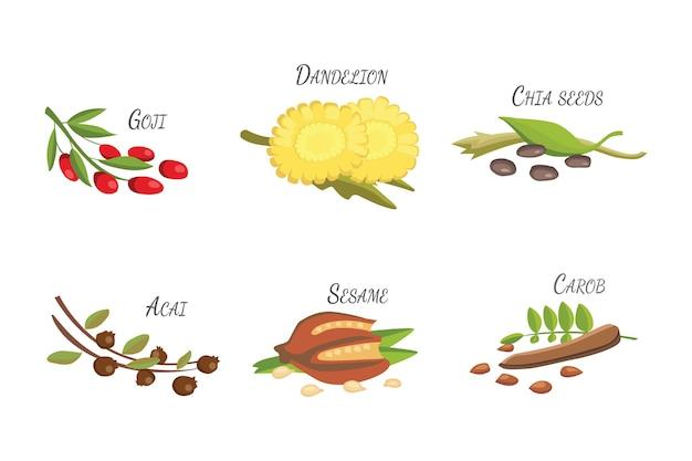 Satz cartoon-superfoods. frische früchte skizzieren hintergrund. illustration für ihre.