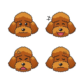 Satz charakteristische braune pudelhundegesichter, die verschiedene emotionen zeigen.