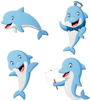 Satz delphinkarikatur verschiedene posen. illustration